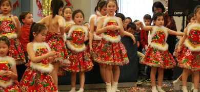 2014马年春节联欢暨庙会