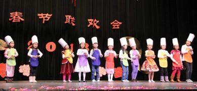 2013蛇年春节联欢暨庙会